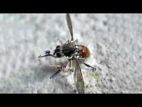NANO SPY DRONE  Mosquito Drone from U S  Military