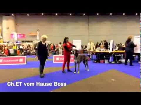 Expo Geneve 16.11.2013 Ch.ET vom Hause Boss