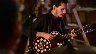 Hugo Linns -  Clipe da música  O Sentido do Lírio