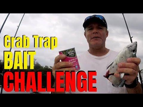 BEST Crab Trap Bait | Best Bait Challenge