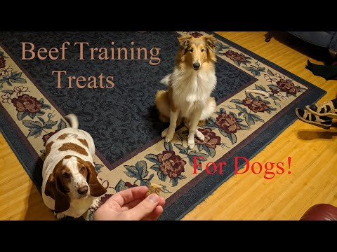 very-easy-beef-training-treats-for-dogs!