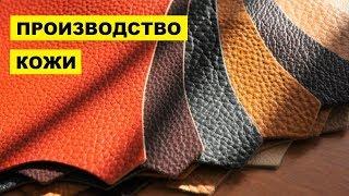 Производство кожи как бизнес идея | Кожевенное производство