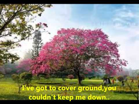 A Beautiful Morning-The Rascals-Lyrics
