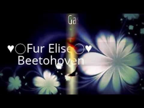 Beethoven ♫♥Fur Elise♥♫