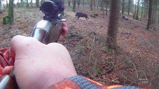 Repeat youtube video chasse au gros dans le Cotentin. charge d'un sanglier de 110kgs.