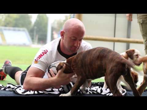 Zebre Rugby Calendario.Le Zebre Rugby Protagoniste Del Calendario 2015 Rescue Boxer
