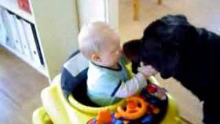 Rottweiler&baby the real side of Rottweiler