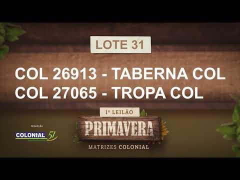 LOTE 31   COL 26913,27065
