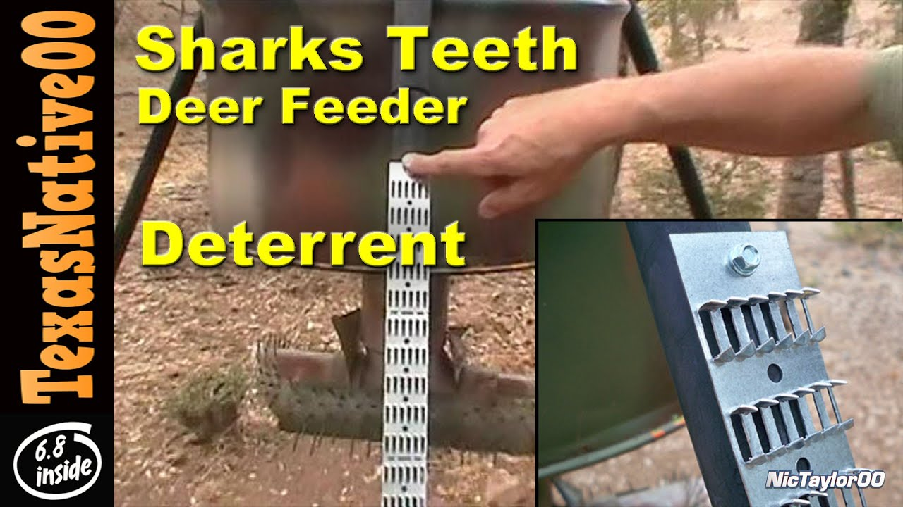 Sharks Teeth Deer Feeder Deterrent for Varmits - REVIEW - YouTube