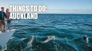 Things to do – Auckland, New Zealand