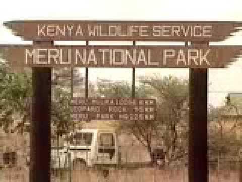 IFAW - Leonardo DiCaprio Reports on Meru National Park