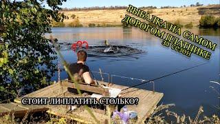 ЗАКРЫТИЕ КАРПОВОГО СЕЗОНА!!! ЗОЛОТОЙ КАРП, САМАЯ ДОРОГАЯ РЫБАЛКА В ЭТОМ СЕЗОНЕ (Рыбалка 2020)