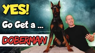 You NEED a Doberman If...