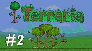 Terraria #02 - Kolorowe włosy :)