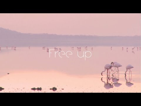 "Yap!!! ""Free up"" (Music Video)"