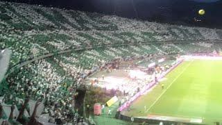 Atlético Nacional vs Atlético Junior - Final Liga Águila ll - 20/12/2015
