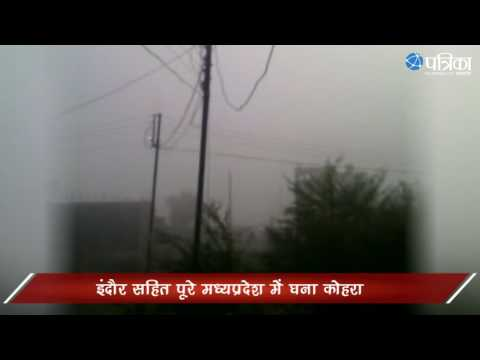 Amazing Fog In Indore | Weather forecast dense fog grip MP temperature down