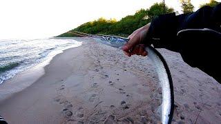 Ловля саргана Балтийское море 2020 Испытал свой новый морской комплект