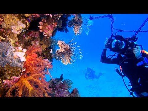 Underwater Video Hurghada Oktober 2018, Gopro Hero 7