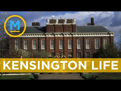What Meghan's life will be like at Kensington Palace | Your Morning