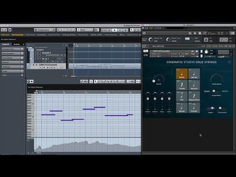 Cinematic Studio Solo Strings - Legato Introduction