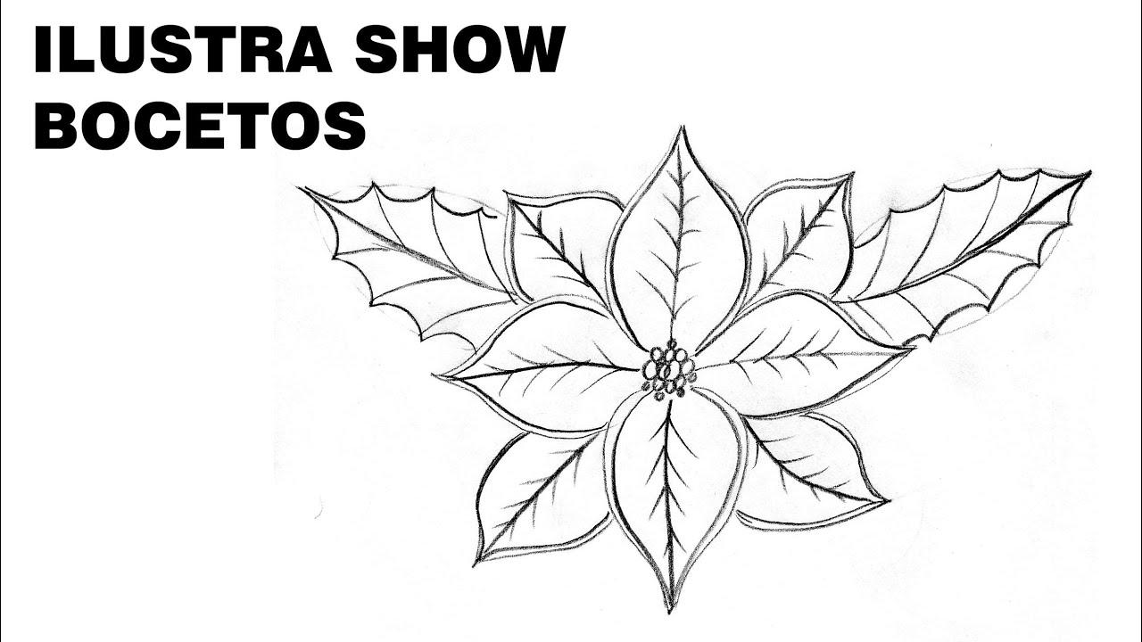 Cmo dibujar FLORES de NOCHEBUENA NAVIDEAS Tutorial ILUSTRA SHOW