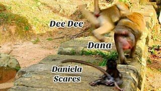 Daniela Deep Scares of nasty Dee Dee, Dee Dee jumping to biite mom Dana
