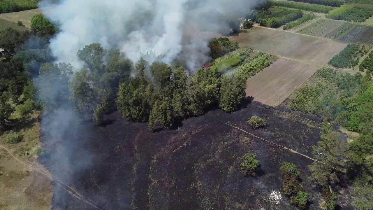 Un incendio de pastizales afecta el lote del Colegio San Pedro y se extiende a un vivero