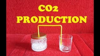 How To Produce Carbon Dioxide (CO2) - SCIENCE EXPERIMENT