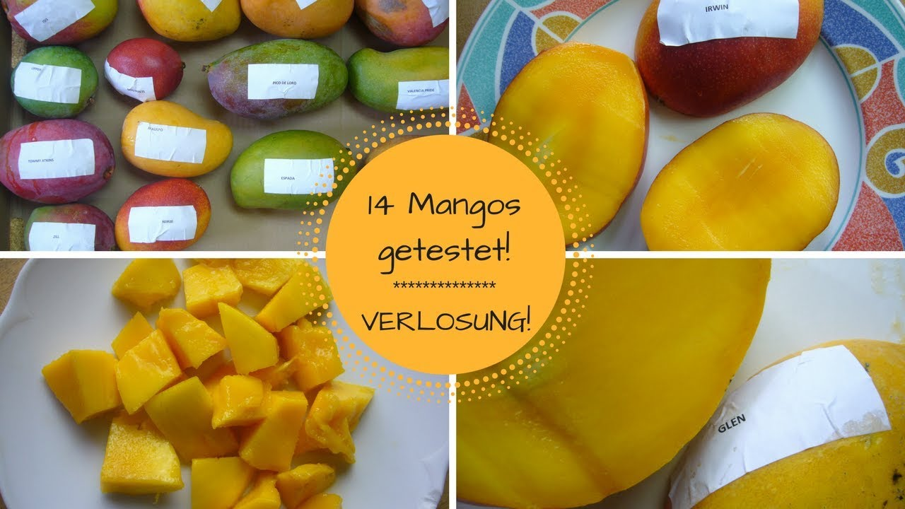 TEST: Mangopaket von Orkos! + VERLOSUNG