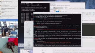 Still in the OBS plugin, C++ networking and threads @scanlime-in-progress thumbnail