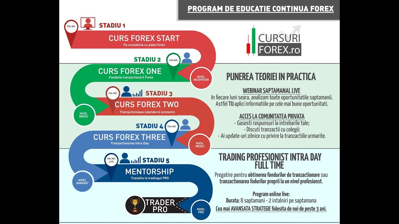 forex youtube curs)
