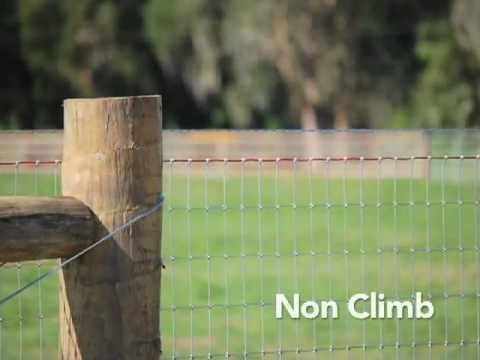 Red Brand Horse Fence Youtube