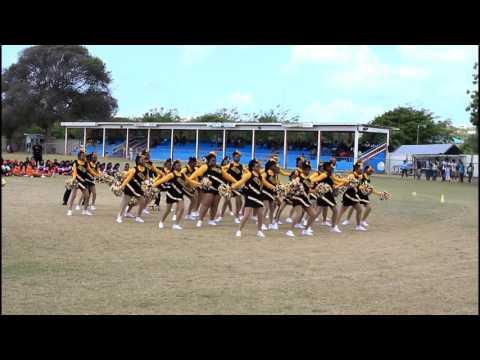 ALHCS Yellow House Cheerleaders 2017