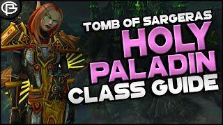 725 Basic Guides  Paladin - Holy