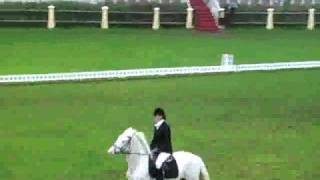 8Th World University Championship - 1St Round Dressage