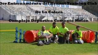 3er Entrenamiento Kennel Training Club De La Calera.