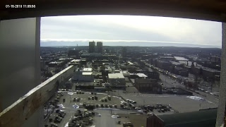Single Digits & Genuity Networks Live Peregrine Falcon Feed1 (Manchester, NH, USA)
