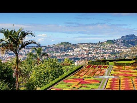 Botanical Gardens Madeira-Funchal. 01.11.15 MSC Splendida(HD)