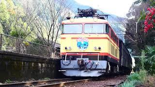 今日も運転ELハッピークリスマストレイイン!大井川鉄道