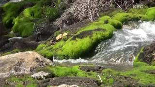 上信越高原 国立公園探索