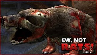 Dungeons and Dragons Online Gameplay | Ew, Not Rats!