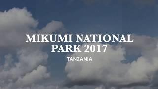 Mikumi National Park, Tanzania 2017