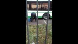 Слив топлива с автобуса в Москве(Слив топлива с автобуса., 2015-11-09T07:50:12.000Z)