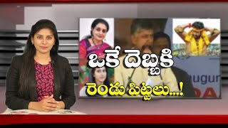 Chandrababu Naidu Master Plan in Telangana Elections | Nandamuri Suhasini | Dot News