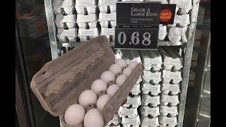 Ответ порохоботам или почему в США яйца дешевле чем в Украине