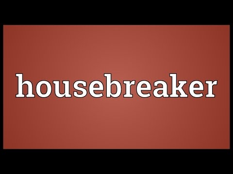 Header of housebreaker