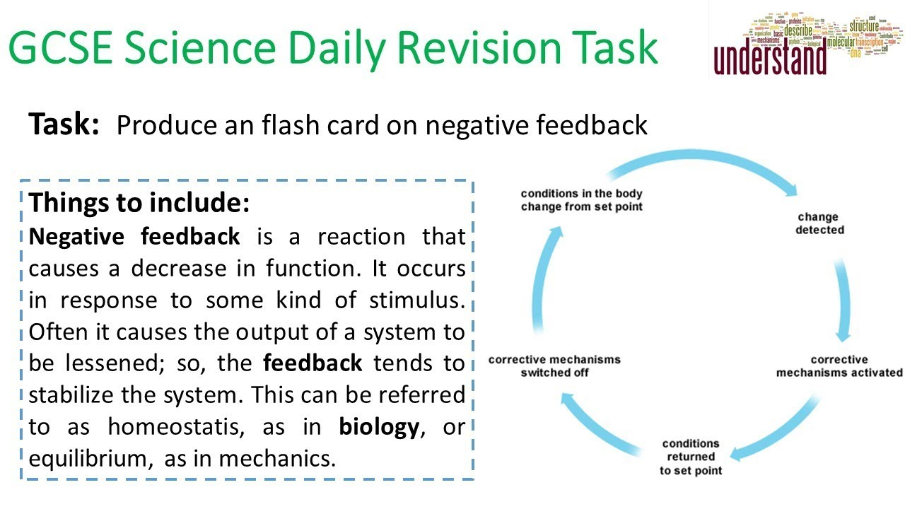 GCSE Science Daily Revision Task 128 - YouTube