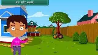 EVS Class 1 | Plant Life | Hindi Video thumbnail