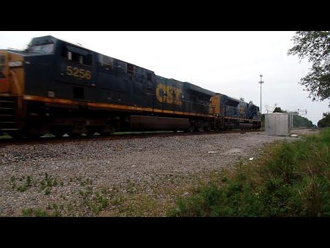 CSX Short Mixed Tropicana Freight Train